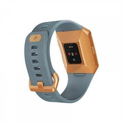 Fitbit Ionic Colour LCD, 320 g, Touchscreen, Bluetooth, Heart rate monitor, Slate Blue/Burnt Orange, GPS (satellite)
